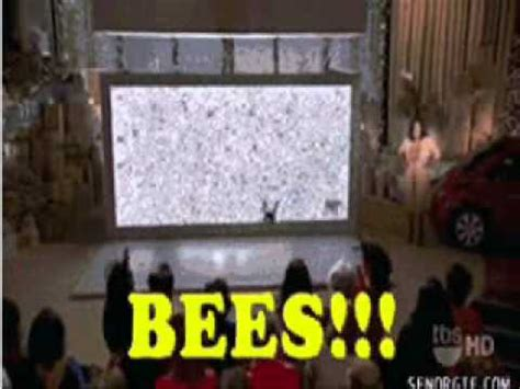 OPRAH SHOW - BEES! THEY ARE EVERYWHERE!!! GIFS!! - YouTube