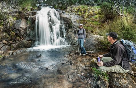 Waterfall walking track   NSW National Parks
