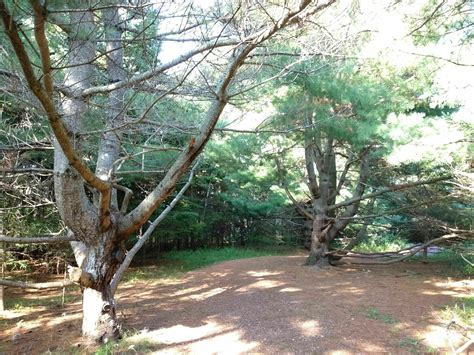 Green Gables Heritage Place Trails - Prince Edward Island