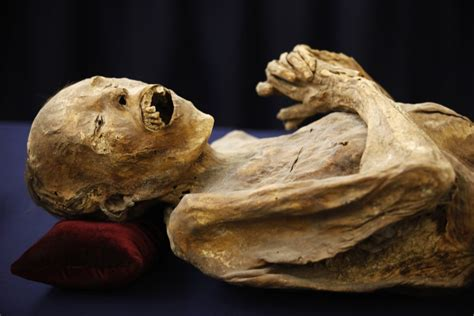 10-Year-Old German Boy Finds Ancient Egyptian Mummy in