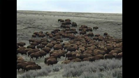Durham Ranch in Wyoming - YouTube