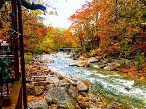 Insider Guide to Chimney Rock State Park w/ Photos